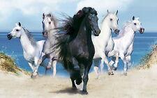 Dream Horses Stunning Print Wall Art | various Sizes A4 -A0 UK Seller | E144