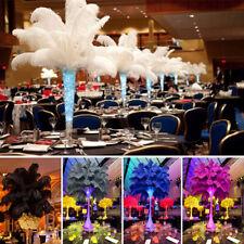 20PCS Large Ostrich Feathers Trim Costume Birthday Wedding Party Decors 25-35cm