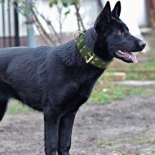 Heavy Duty grand chien collier cou Buckl grande race Nylon colliers réglables