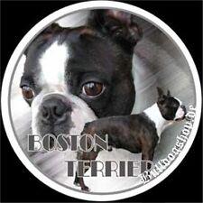 Design Sticker Motif 1 Boston Terrier Boston Terrier Car Sticker