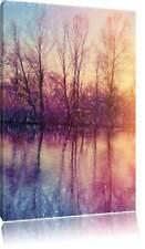 Árboles Espejo Situado en el Agua Plumas Coloridas Efecto Foto en Lienzo