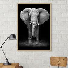 Elephant Silk Canvas Poster Art Black White Painting Wall Decor A164 Unframerd