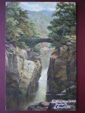 POSTCARD PERTHSHIRE DUNHELD & LONGSTAFFE - THE HERMITAGE BRIDGE S HILDESHEIMER