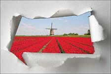 Adhesivo trampantojo papel desgarrado decoración Campo de la flor ref 1348