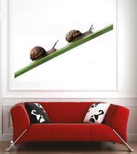 poster poster decorazione da muro Lumache ref 10055053 (6 dimensioni)