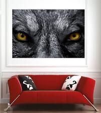 Affiche poster décoration murale Yeux de loup réf 7804327 (6 dimensions)