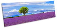 Lavender Purple Landscape Picture PANORAMA CANVAS WALL ART Print