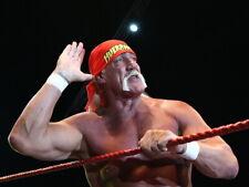 Hulk Hogan Wrestling Champion WWE Terry Gene Bollea HUGE GIANT PRINT POSTER