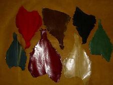 Scholle Fischleder, Lederhaut, Leder, 7 Farben z. Auswahl, selten, fishleather,