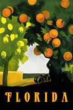 Florida Fruit Lemon Orange Grove Farm Vintage Poster Repro FREE SHIP in USA