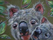 Koala baby animal Australian wildlife print