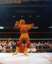 HULK HOGAN WWF WRESTLING 8X10 SPORTS PHOTO #P