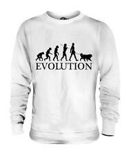 CLUMBER SPANIEL EVOLUTION OF MAN UNISEX SWEATER MENS WOMENS DOG LOVER GIFT