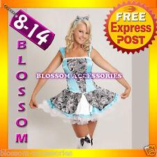 BL1 Palace Alice In Wonderland Fancy Dress Costume