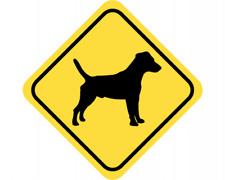 Jack russell Terrier Warnschild Warndreieck Aufkleber Achtung Vorsicht Hund
