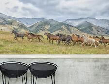 3D Cavallo,Corsa Parete Murale Foto Carta da parati immagine sfondo muro stampa