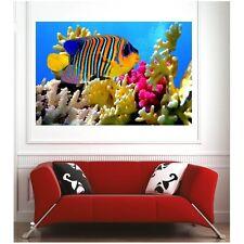 Affiche poster poisson tropical 71524963 Art déco Stickers