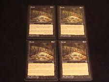 Magic the Gathering Perish X4 Tempest EX+ FREE SHIPPING TO USA MTG Cards