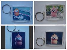Zingy, Photo Keyring / bag tag, clear plastic,