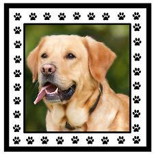 Su Propio Personalizado Foto del perro - Souvenir Novedad POSAVASOS -REGALOS-