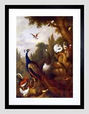 NATURE ANIMAL BIRDS BOGDANI PEACOCK PARROT CANARY PARK FRAMED ART PRINT B12X3970