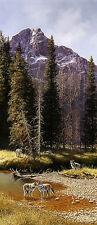 Bonnie Marris THE COMEBACK art print Wolves Yellowstone