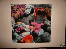 ISRAELI ARTIST~MENASHE KADISHMAN~ SHEEP