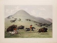 "Catlin North American Indian Portfolio: ""Buffalo Hunt, Chase"" — Fine Art Print"