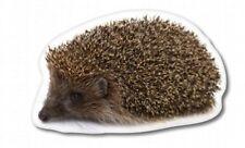 Hedgehog Car Vinyl Sticker - SELECT SIZE