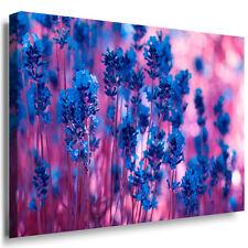 Lavendel Duft herlich Blume Leinwandbild  Bild Wandbild Juliaart Top Qualität !!