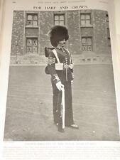 1903 COLOUR SERGEANT OF THE ROYAL IRISH GUARDS BEARSKIN FULL DRESS &C