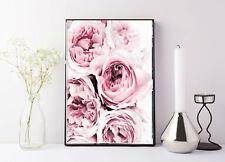 Peony print • Pink peony Scandi Print Poster Pale Pink Peonies Photography