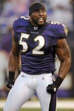 Ray Lewis Baltimore Ravens 8x10 11x17 16x20 24x36 27x40 Football Photo Poster A