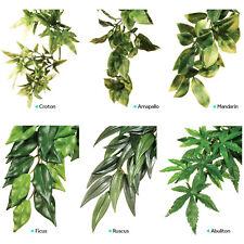 Exo Terra Replica Plants Ficus Ruscus Abuliton Amapallo Croton Mandarin