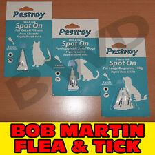 PESTROY BOB MARTIN FLEA & TICK SPOT ON TREATMENT PROTECTION DOG CAT PUPPY KITTEN
