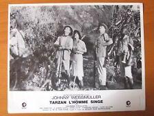 TARZAN L'HOMME SINGE JOHNNY WEISSMULLER  LOBBY CARD