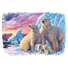 New Polar Bears   Sweatshirt /Longsleeved tshirt   Sizes/ Colors