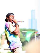 Tyler the Creator Rapper Hip-Hop Music Rap Giant Wall Print POSTER