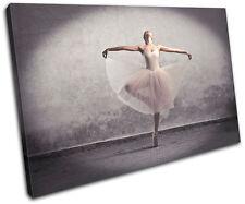 Ballerina Dancer  Performing SINGLE DOEK WALL ART foto afdrukken