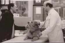PF Dr. Doolittle ( Eddie Murphy )