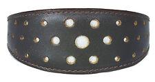 Brown Leather Whippet Collar Greyhound Collar Circle Glitter Design Dog Collar