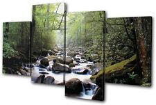 Landscapes Forest Stream ECO MULTI LONA pared arte Foto impresion