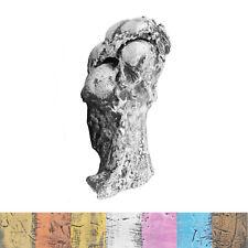 Kit de fundición pata de primera calidad con acabado en cera superior | 3D Pawprint | amantes de perros Regalo