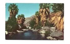 Palm Canyon Ca Stately Springs Stream View Vtg Postcard