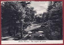 PAVIA SALICE TERME 35 PARCO GIARDINO Cartolina viaggiata (1957 ?)
