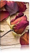 getrocknete Rosenblüten auf Holz Leinwandbild Wanddeko Kunstdruck