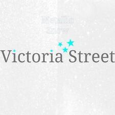 "Victoria Street Glitter - Metallic Snow White - Fine 0.008"" / 0.2mm (Clear)"