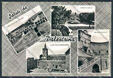 Roma Palestrina Foto FG cartolina D5108 SZD