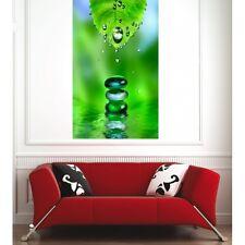 Affiche poster feuille gouttes d'eau  1363838
