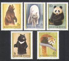 UNGHERIA 1977 ORSI/PANDA/polari/Animali/NATURA/animali selvatici 5v Set (n35781)